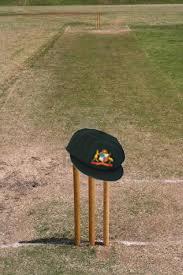 cricket bets